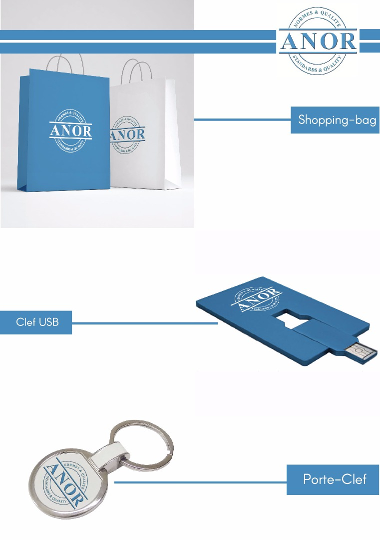 Clef USB , Shopping Bag , Porte-Clef